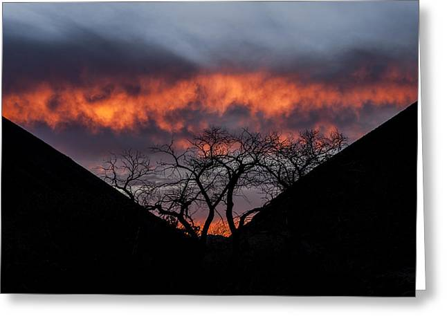 California Deserts Greeting Cards - Death Valley Sunset Greeting Card by Cat Connor