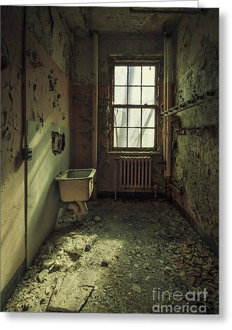 Asylum Greeting Cards - Decade Of Decay Greeting Card by Evelina Kremsdorf