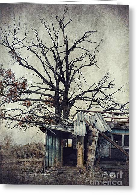 Creepy Digital Art Greeting Cards - Decay Barn Greeting Card by Svetlana Sewell