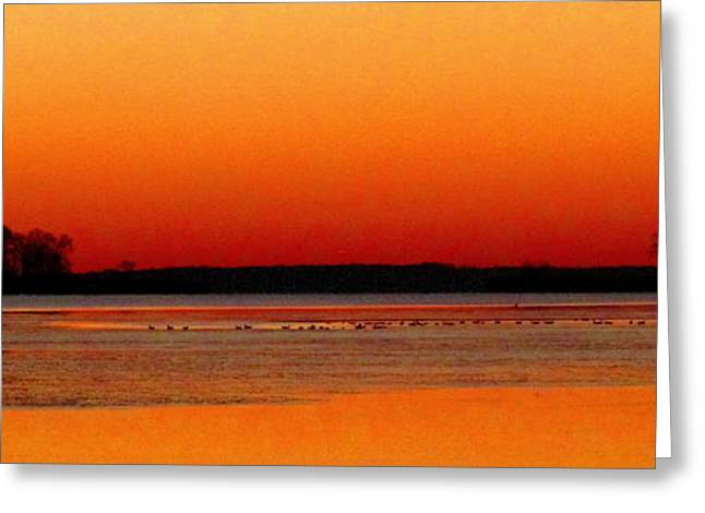 Tangerine Greeting Cards - December Dundee Dawn Greeting Card by Joshua Bales