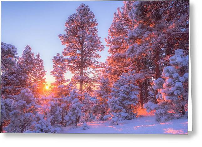 Landscape Framed Prints Greeting Cards - December Sunrise Greeting Card by Darren  White