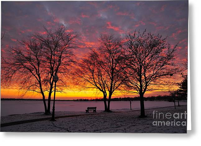 Twilight Greeting Cards - December Sunset Greeting Card by Terri Gostola