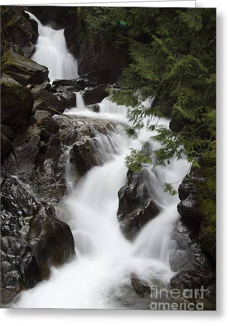 Water Flowing Greeting Cards - Deception Falls Washington 3 Greeting Card by Bob Christopher