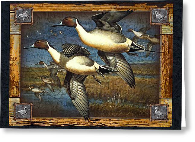 Wetland Greeting Cards - Deco Pintail Ducks Greeting Card by JQ Licensing