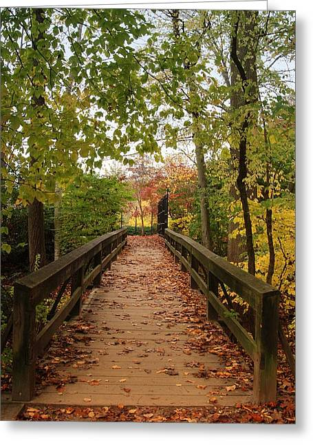 Photos With Red Photographs Greeting Cards - Decorate With Leaves - Holmdel Park Greeting Card by Angie Tirado