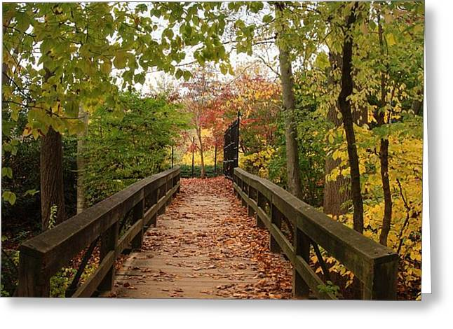 Decorate With Leaves - Holmdel Park Greeting Card by Angie Tirado