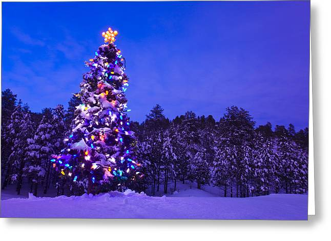 Snowy Night Night Greeting Cards - Decorated & Lit Christmas Tree In A Greeting Card by Michael DeYoung