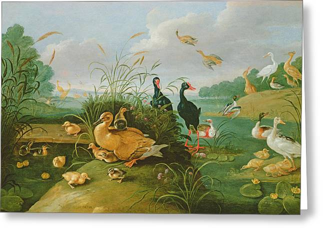 Duck Pond Greeting Cards - Decorative Fowl And Ducklings Greeting Card by Jan van, the Elder Kessel