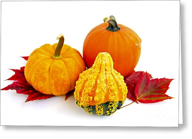 Mini Photographs Greeting Cards - Decorative pumpkins Greeting Card by Elena Elisseeva