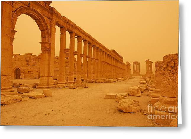Roman Columns Greeting Cards - Decumanus the colonnaded street at Palmyra Syria in the light after a sandstorm Greeting Card by Robert Preston
