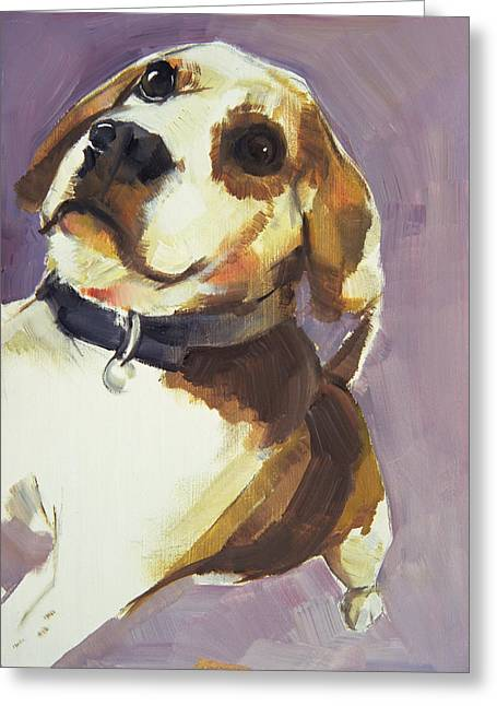 Hunting Dogs Greeting Cards - Dee, 2006 Oil On Board Greeting Card by Sally Muir