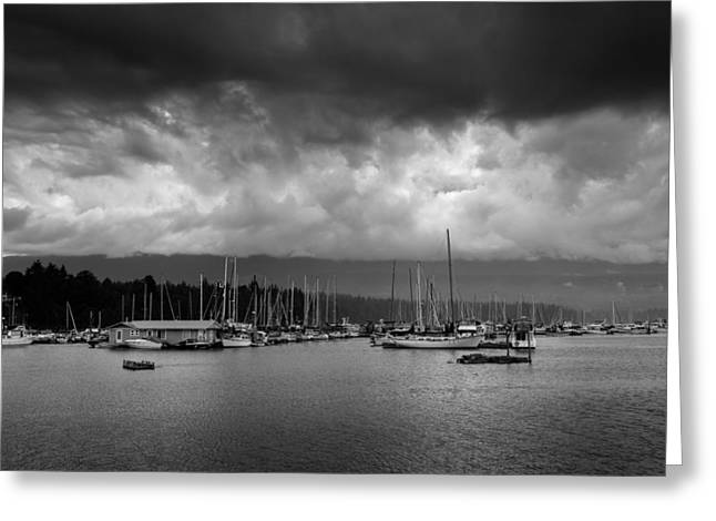 Deep Bay British Columbia Greeting Cards - Deep Bay in a storm Greeting Card by Leighton Collins