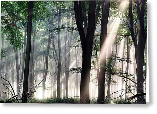 Light Shaft Greeting Cards - Deep forest morning light Greeting Card by Simon Bratt Photography LRPS