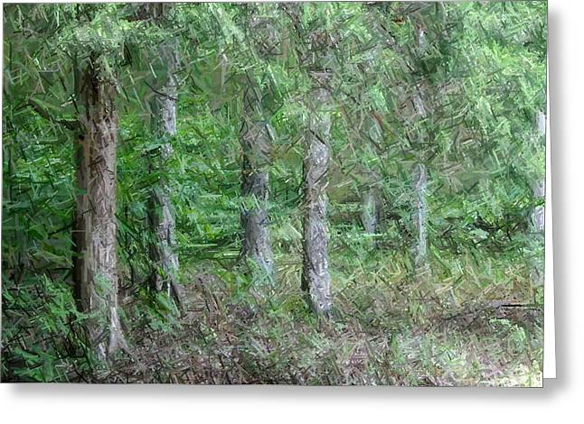 Pines Tapestries - Textiles Greeting Cards - Deep Woods-Bernheim Forest Greeting Card by Thia Stover