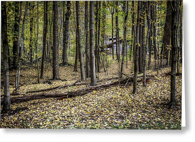 Deep Woods Cabin Greeting Card by Tom Mc Nemar