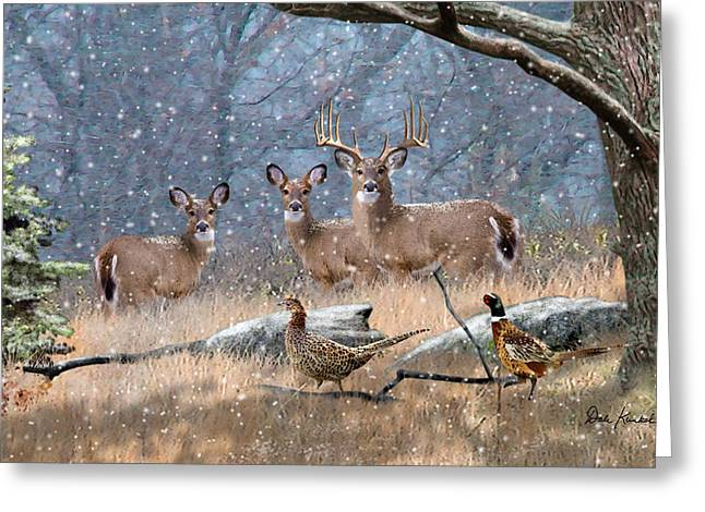 Wildlife Art Acrylic Prints Greeting Cards - Deer Art - First Snow Greeting Card by Dale Kunkel Art