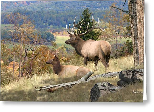 Elk Greeting Cards - Deer Art - Return of the Elk Greeting Card by Dale Kunkel Art