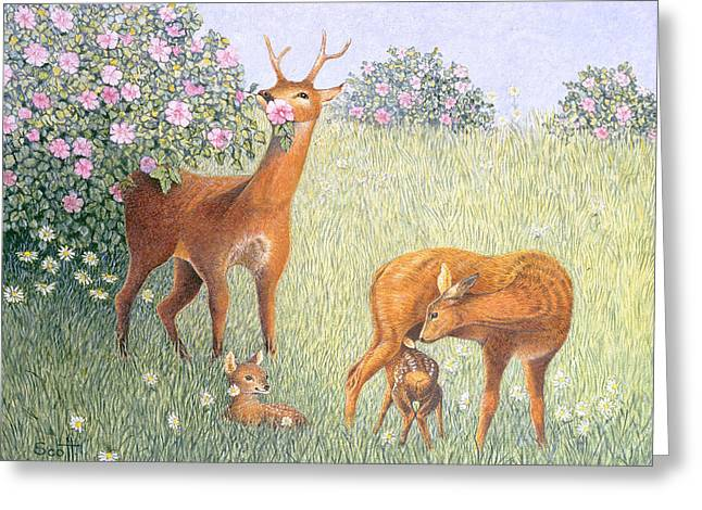 C20th Greeting Cards - Deer Family Oil On Canvas Greeting Card by Pat Scott