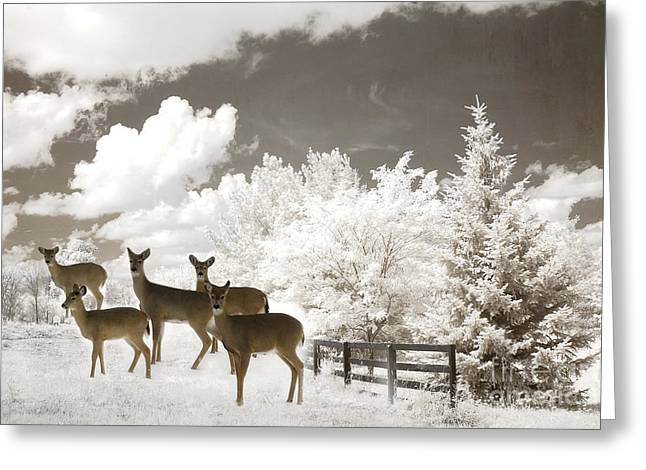 Deer Nature Winter - Surreal Nature Deer Winter Snow Landscape Greeting Card by Kathy Fornal