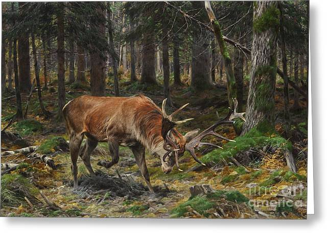 Wooden Building Paintings Greeting Cards - Deer in a Forest Glade Greeting Card by Celestial Images