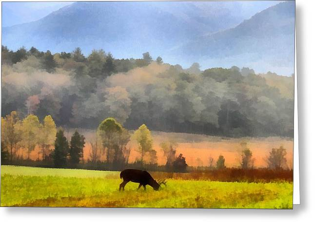 National Parks Mixed Media Greeting Cards - Deer In Cades Cove Smoky Mountains National Park Greeting Card by Dan Sproul