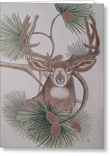 Pine Cones Mixed Media Greeting Cards - Deer in the Northwest Greeting Card by Teresa Wenger