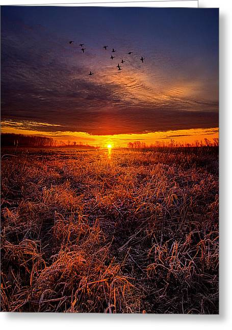 Geographic Greeting Cards - Deer Run Greeting Card by Phil Koch