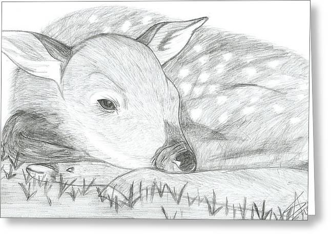 Abhinav Krishna Dwivedi Greeting Cards - Deer Sketch Greeting Card by Abhinav Krishna Dwivedi