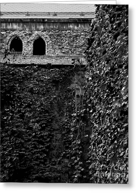 Catherdral Greeting Cards - Defunct Parish 5 Greeting Card by James Aiken
