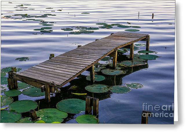 Reelfoot Lake Greeting Cards - Delapitated dock Greeting Card by Anthony Heflin