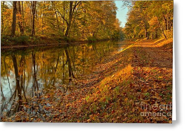 Jogging Greeting Cards - Delaware Canal Fall Foliage Greeting Card by Adam Jewell