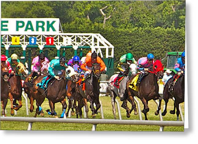 Race Horse Greeting Cards - Delaware Park Greeting Card by Alice Gipson