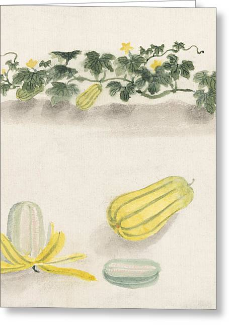 Art Decor Greeting Cards - Delicata squash Greeting Card by Aged Pixel