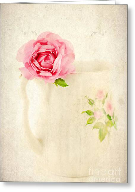 Old Pitcher Greeting Cards - Delicate Greeting Card by Darren Fisher