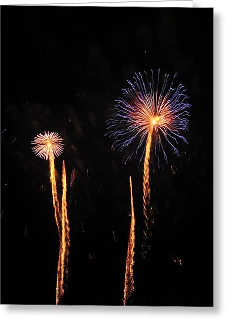 Feuerwerk Greeting Cards - Delicate Flowers Greeting Card by San Con