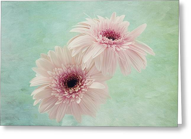 Textured Floral Greeting Cards - Delicate Pinks Greeting Card by Kim Hojnacki
