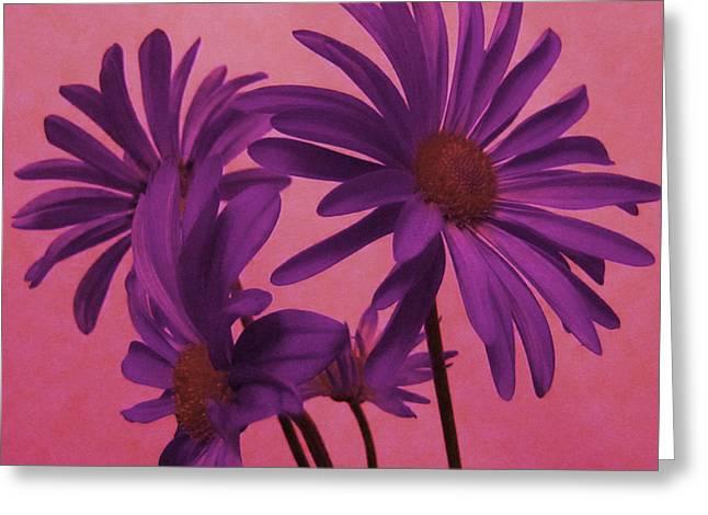 Enhanced Greeting Cards - Delicate Purple Flowers Greeting Card by Adri Turner