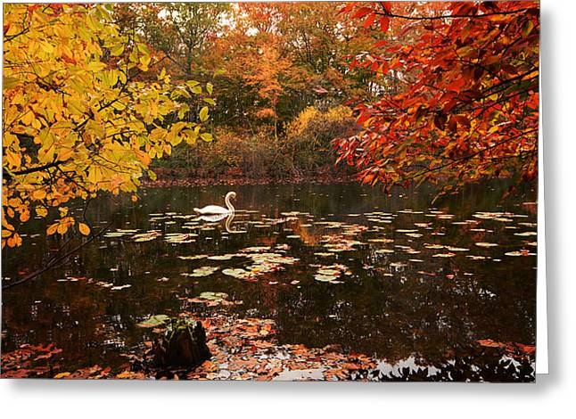 Autumn Art Greeting Cards - Delightful Autumn Greeting Card by Lourry Legarde