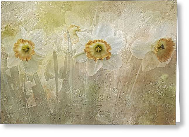 Perky Greeting Cards - Delightful Daffodils Greeting Card by Diane Schuster