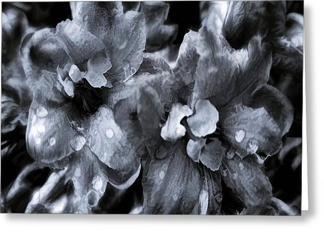 Blossoms Greeting Cards - Delphinium Blues Greeting Card by Jean OKeeffe Macro Abundance Art