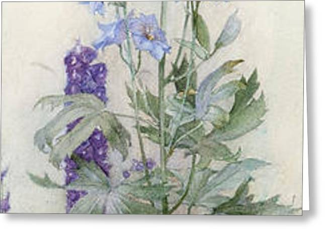 Delphiniums Greeting Card by James Valentine Jelley