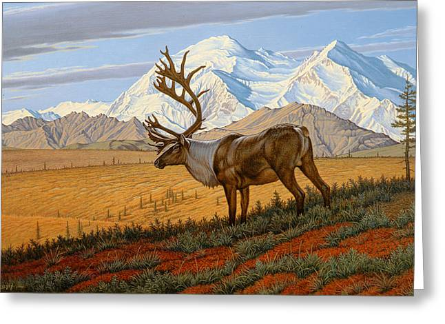 Caribou Greeting Cards - Denali  Greeting Card by Paul Krapf