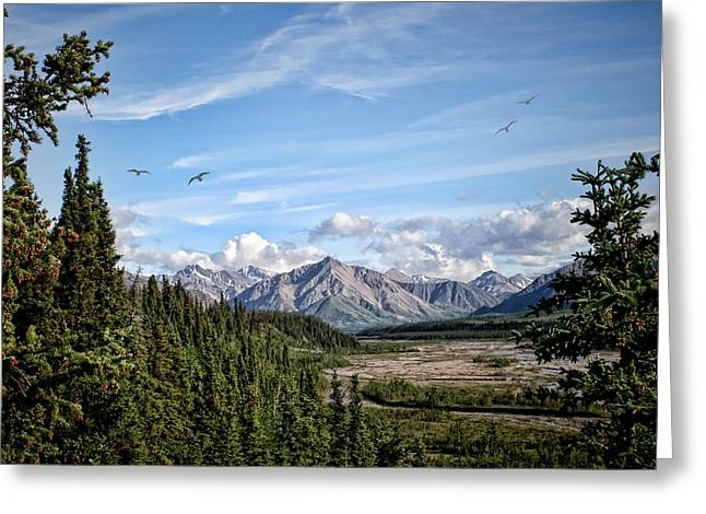 Ak Greeting Cards - Denali Valley Greeting Card by Heather Applegate