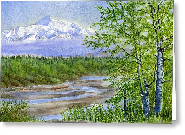Highway Greeting Cards - Denali Viewpoint Greeting Card by Sharon Freeman