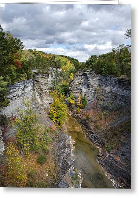 Ithaca Greeting Cards - Gorge Landscape Greeting Card by Christina Rollo