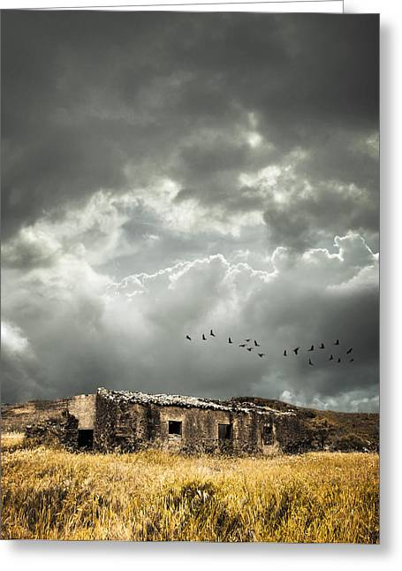 Derelict Rural Building Greeting Card by Amanda Elwell