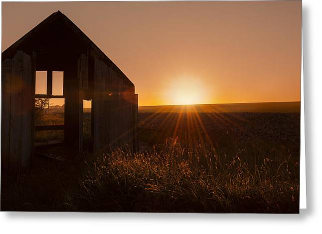 Derelict Shed Greeting Card by Svetlana Sewell