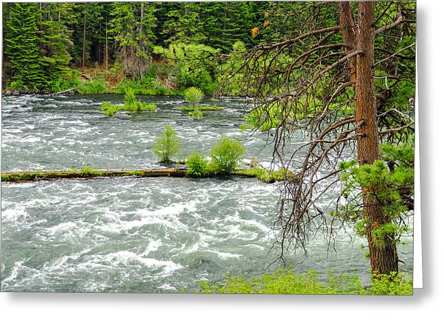 Deschutes River Greeting Cards - Deschutes River in Central Oregon Greeting Card by Jess Kraft