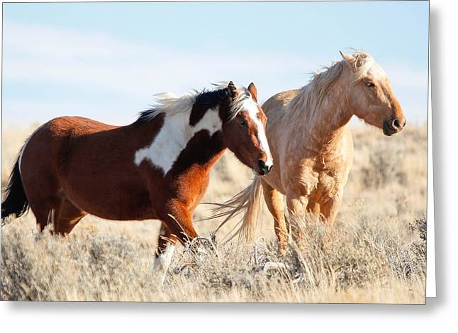 Vale Greeting Cards - Desert Angels II Greeting Card by Athena Mckinzie