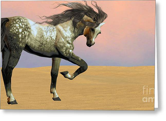 Horse Images Digital Greeting Cards - Desert Arabian Horse Greeting Card by Corey Ford